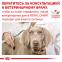 Royal Canin Recovery (Роял Канин Рекавери) консервы для собак и кошек 195 г 0