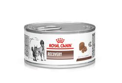 Royal Canin Recovery (Роял Канин Рекавери) консервы для собак и кошек 195 г