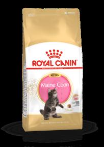 Royal Canin Kitten Maincoon для котят Мэйн-кун от 4-15 мес