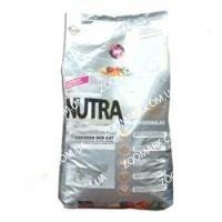 Nutra Gold Cat Breeder (Нутра Голд) корм для кошек