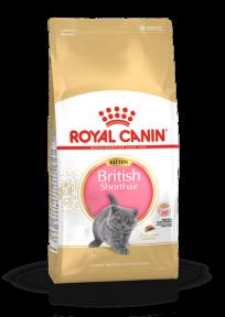 Royal Canin Kitten British Shorthair (Роял Канин) для котят породы британская короткошерстная в возрасте до 12 месяцев